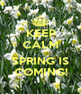 KEEP CALM  SPRING IS COMING! - Personalised Poster A1 size