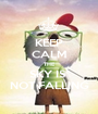 KEEP CALM THE SKY IS  NOT FALLING - Personalised Poster A1 size