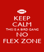 KEEP CALM THIS IS A BIRD GANG NO FLEX ZONE - Personalised Poster A1 size