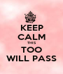 KEEP CALM THIS TOO WILL PASS - Personalised Poster A1 size