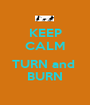 KEEP CALM  TURN and  BURN - Personalised Poster A1 size