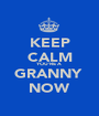 KEEP CALM YOU'RE A  GRANNY  NOW - Personalised Poster A1 size