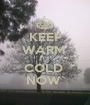KEEP WARM  IT'S  COLD  NOW  - Personalised Poster A1 size