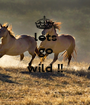 lets go  wild !!  - Personalised Poster A1 size
