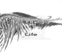 LLC 4  Life  - Personalised Poster A1 size