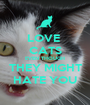 LOVE  CATS EVEN THOUGH THEY MIGHT HATE YOU - Personalised Poster A1 size