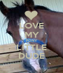 LOVE MY PONY LITTLE DUDE - Personalised Poster A1 size