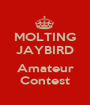MOLTING JAYBIRD  Amateur Contest - Personalised Poster A1 size