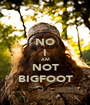 NO I AM NOT BIGFOOT - Personalised Poster A1 size