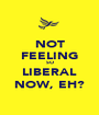 NOT FEELING SO LIBERAL NOW, EH? - Personalised Poster A1 size