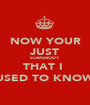 NOW YOUR JUST SOMEBODY THAT I  USED TO KNOW - Personalised Poster A1 size