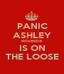PANIC ASHLEY MCKENZIE IS ON THE LOOSE - Personalised Poster A1 size