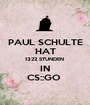 PAUL SCHULTE HAT 1322 STUNDEN   IN  CS::GO  - Personalised Poster A1 size