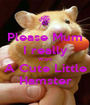 Please Mum I really Want A Cute Little Hamster - Personalised Poster A1 size