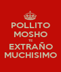POLLITO MOSHO TE EXTRAÑO MUCHISIMO - Personalised Poster A1 size