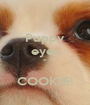 Puppy eyes =  COOKIE! - Personalised Poster A1 size