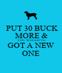 PUT 30 BUCK MORE & YOU WOULD'VE GOT A NEW ONE - Personalised Poster A1 size