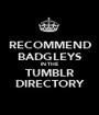RECOMMEND BADGLEYS IN THE TUMBLR DIRECTORY - Personalised Poster A1 size