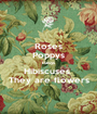 Roses Poppys Daisys Hibiscuses  They are flowers - Personalised Poster A1 size
