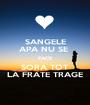 SANGELE APA NU SE  FACE SORA TOT LA FRATE TRAGE - Personalised Poster A1 size