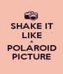 SHAKE IT LIKE A POLAROID PICTURE - Personalised Poster A1 size