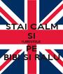 STAI CALM SI IUBESTELE PE BIBI SI RALU - Personalised Poster A1 size