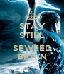 STAY STILL  SEWEED BRAIN - Personalised Poster A1 size