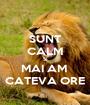 SUNT CALM SI MAI AM  CATEVA ORE - Personalised Poster A1 size