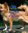 Sunu rojus    - Personalised Poster A1 size