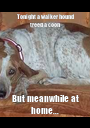 Tonight a walker hound treed a coon But meanwhile at home... - Personalised Poster A1 size