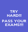TRY HARD!!!  PASS YOUR EXAMS!!!! - Personalised Poster A1 size