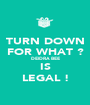 TURN DOWN FOR WHAT ? DEIDRA BEE IS LEGAL ! - Personalised Poster A1 size