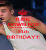 TURN  DOWN FOR WHAT ??? IT'S YASMINE's 14th BIRTHDAY!!! - Personalised Poster A1 size