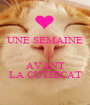 UNE SEMAINE   AVANT LA CUTIECAT - Personalised Poster A1 size