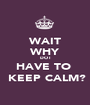 WAIT WHY DO I HAVE TO   KEEP CALM? - Personalised Poster A1 size