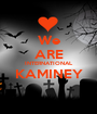 We ARE INTERNATIONAL KAMINEY  - Personalised Poster A1 size