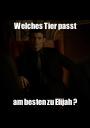 Welches Tier passt am besten zu Elijah ? - Personalised Poster A1 size