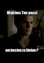 Welches Tier passt am besten zu Stefan ? - Personalised Poster A1 size