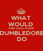 WHAT  WOULD  KEEP CALM...PLEASE DUMBLEDORE DO - Personalised Poster A1 size