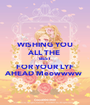 WISHING YOU ALL THE  BEST  FOR YOUR LYF AHEAD Meowwww  - Personalised Poster A1 size