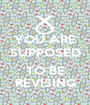 YOU ARE SUPPOSED  TO BE REVISING - Personalised Poster A1 size