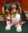 GUILTY AS CHARGED - Personalised Poster A4 size