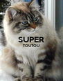 SUPER TOUTOU   - Personalised Poster A4 size