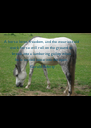 A horse loves freedom, and the weariest old  work horse will roll on the ground or  break into a lumbering gallop when  he is turned loose into the open.  - Personalised Poster A4 size