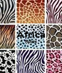 Africa Rules   - Personalised Poster A4 size