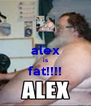 alex is fat!!!!  - Personalised Poster A4 size