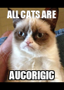 ALL CATS ARE AUCORIGIC - Personalised Poster A4 size