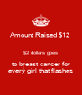 Amount Raised $12  $2 dollars goes to breast cancer for every girl that flashes - Personalised Poster A4 size