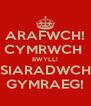 ARAFWCH! CYMRWCH  BWYLL! SIARADWCH GYMRAEG! - Personalised Poster A4 size