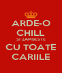 ARDE-O CHILL SI ZAMBESTE CU TOATE CARIILE - Personalised Poster A4 size
